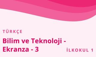 1. Sınıf Türkçe 31.Bölüm