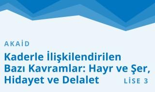 11. Sınıf Anadolu İmam Hatip 43.Bölüm