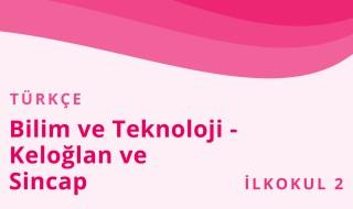 2. Sınıf Türkçe 26.Bölüm