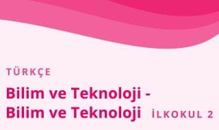2. Sınıf Türkçe 31.Bölüm