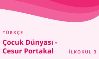 3. Sınıf Türkçe 17.Bölüm