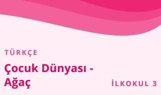 3. Sınıf Türkçe 19.Bölüm