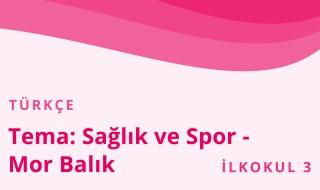 3. Sınıf Türkçe 28.Bölüm