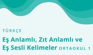 5. Sınıf Türkçe 8.Bölüm