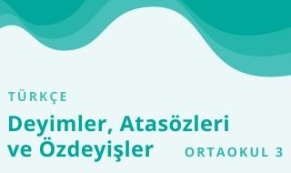 7. Sınıf Türkçe 8.Bölüm